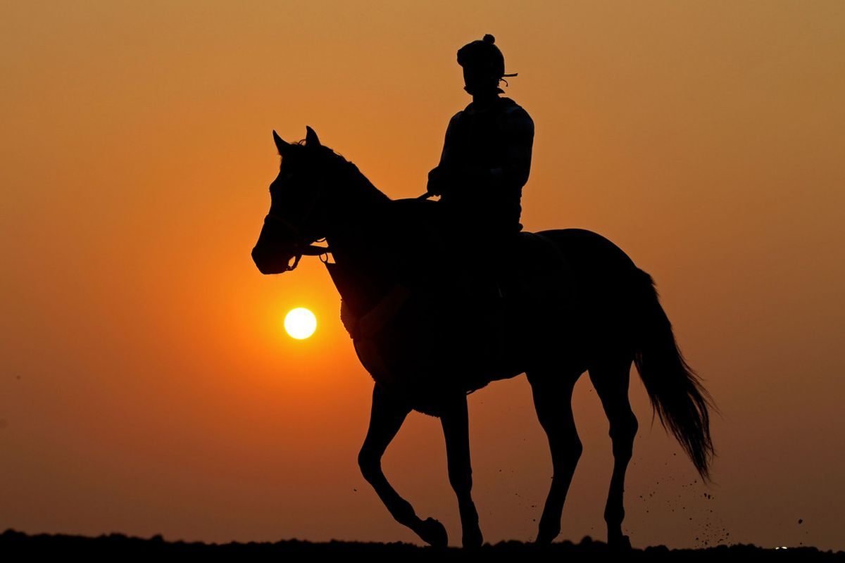 ELMONT, NY - JUNE 09:  A horse and exercise rider work on the track during a morning training session in preparation for The Belmont Stakes  at Belmont Park on June 9, 2011 in Elmont, New York.  (Photo by Al Bello/Getty Images)