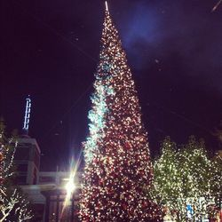 The 100-foot Christmas tree in all its glory