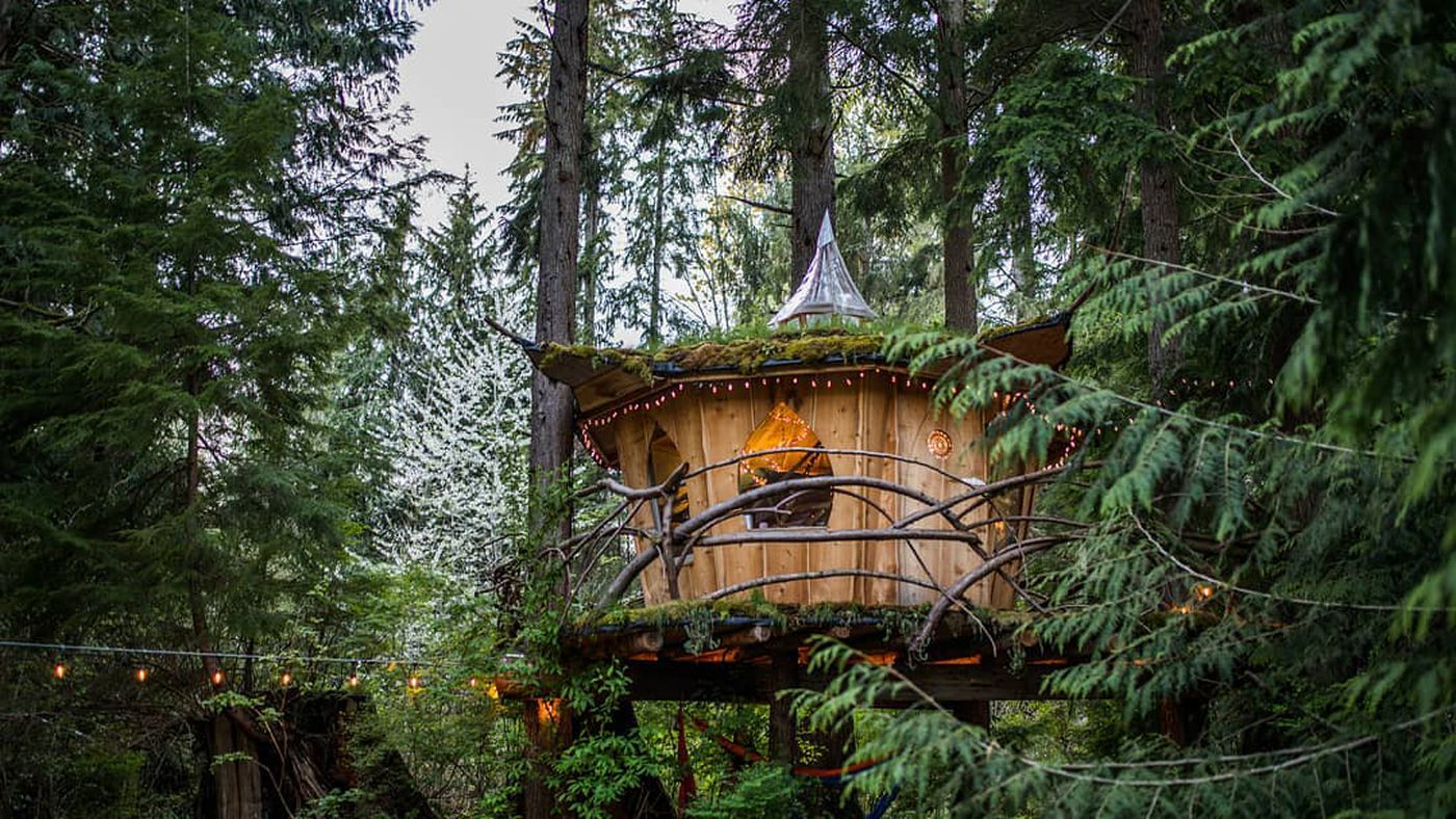 Treehouse Vacation Rentals Near Seattle For Lofty Getaways Curbed Seattle