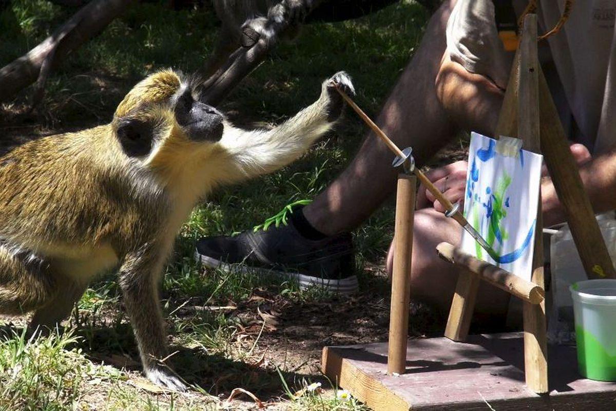 Photos courtesy Oakland Zoo