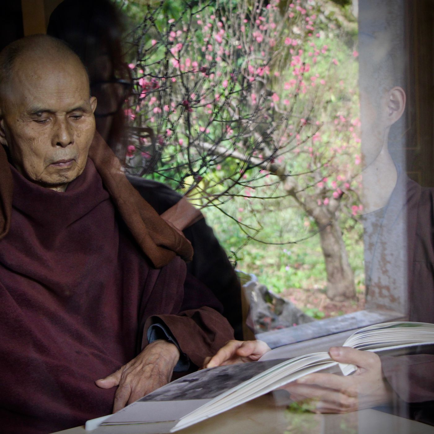Thich Nhat Hanh's final mindfulness lesson: how to die peacefully - Vox
