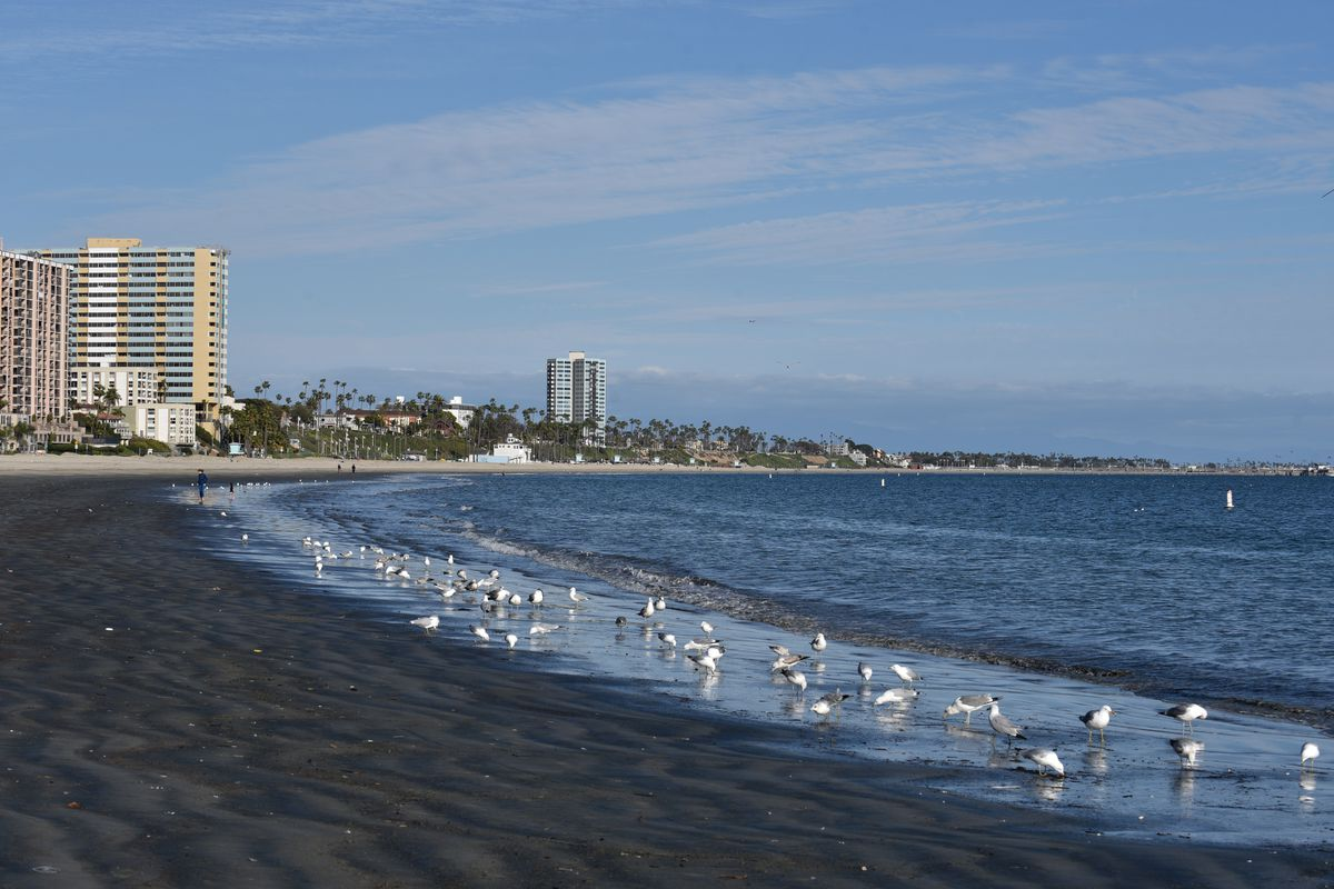 Long Beach Named La County S Most Polluted Beach Curbed La