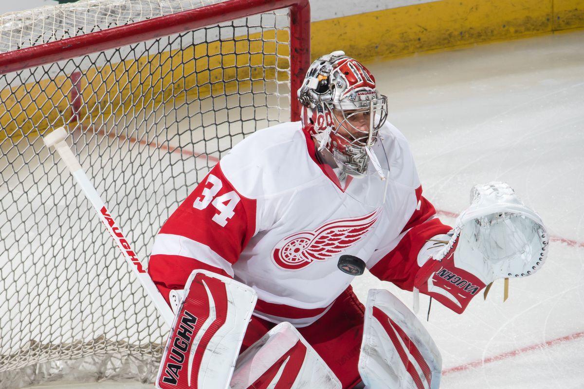 Detroit Red Wings Goaltending Shut Up About Martin Brodeur Trade
