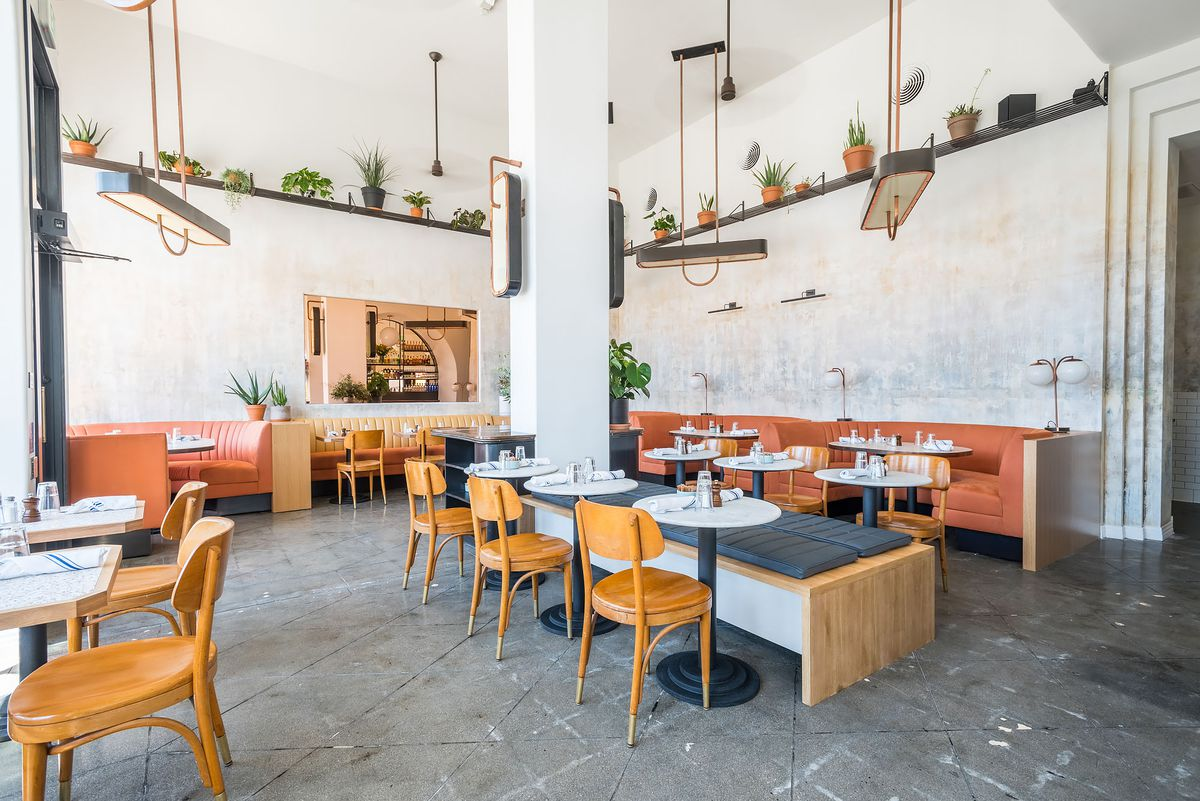 Brooklyn's Stylish Five Leaves Restaurant Opens in East ... on sage house plant, egg house plant, five leaves new york, five leaves vine, five leaves ground cover, five leaves poisonous plants,