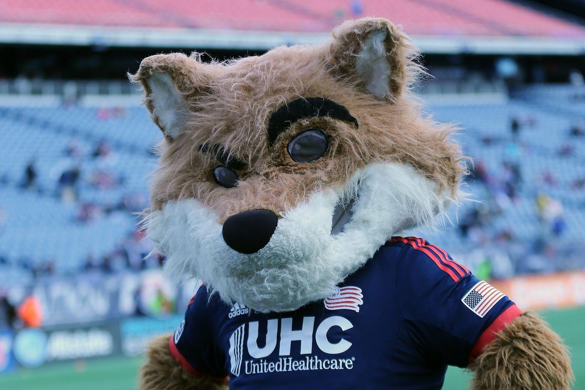 SOCCER: NOV 29 MLS - Eastern Conference Final - Red Bulls at Revolution