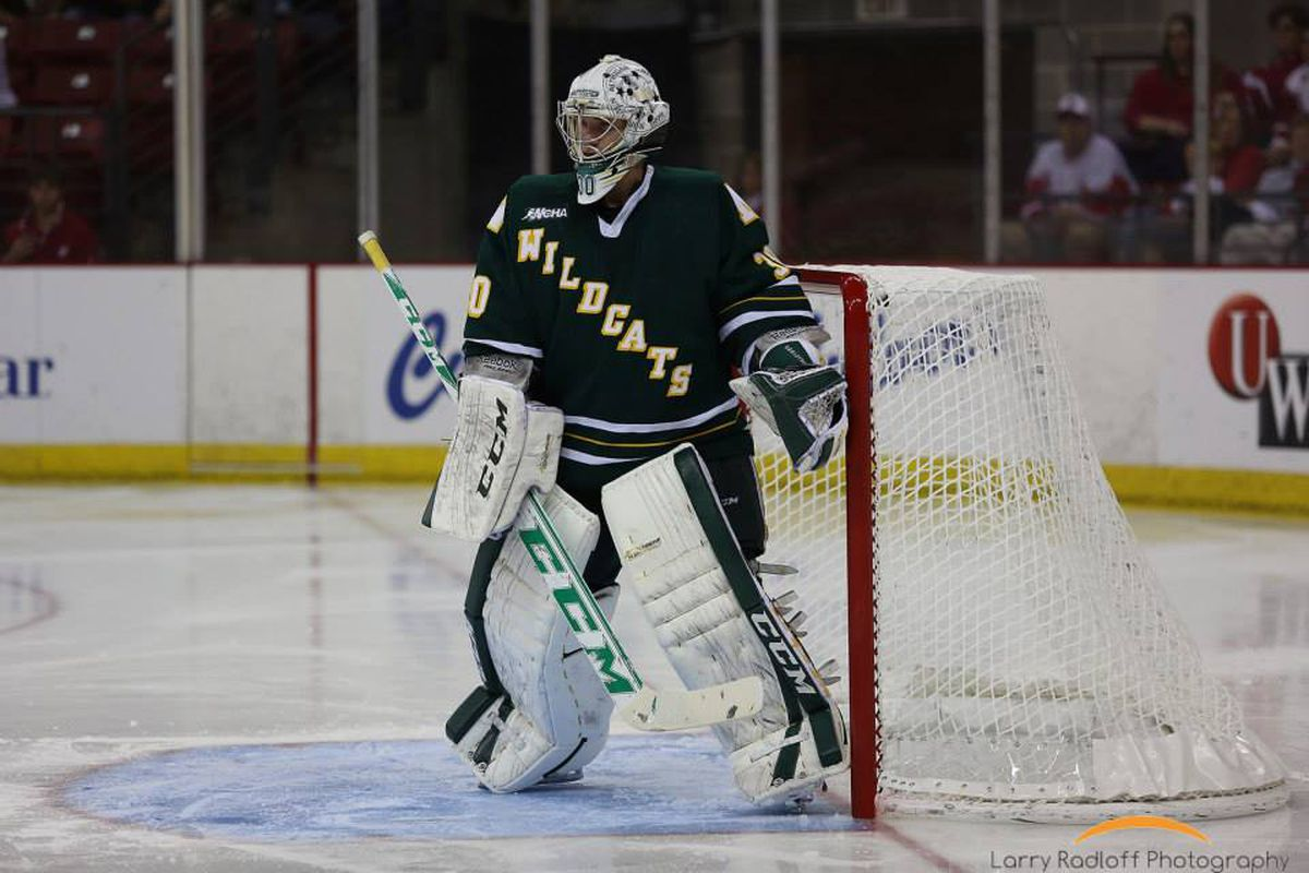 Mathias Dahlstrom starts in net tonight for Northern Michigan against Wisconsin.