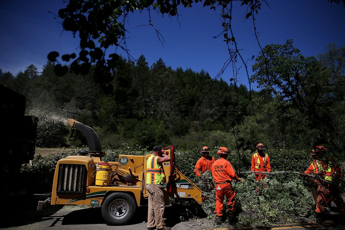 Inmate Fire Crews Remove Brush As Fire Season Begins Early In Northern California