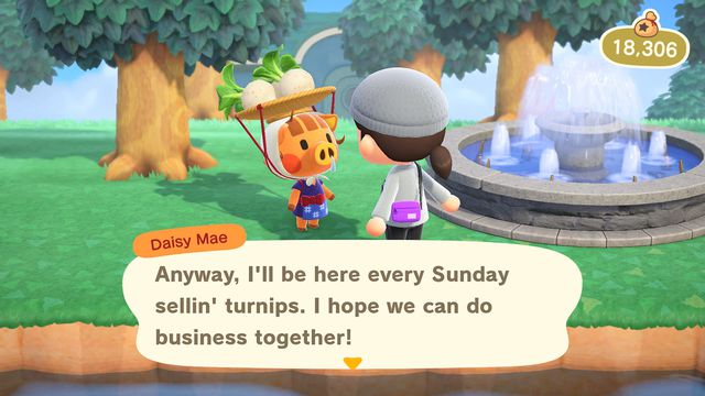 A small boar with turnips on her head, Daisy Mae, notes that she'll be around on Sundays selling turnips in Animal Crossing: New Horizons