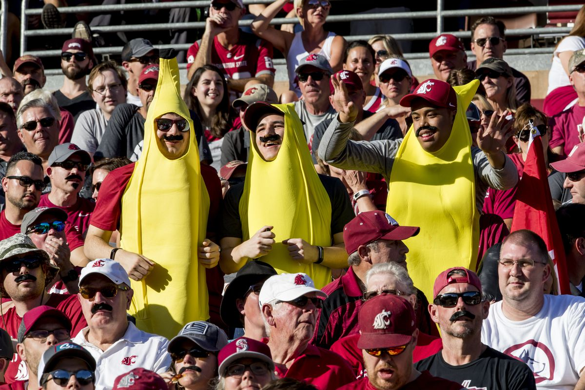 COLLEGE FOOTBALL: OCT 27 Washington State at Stanford