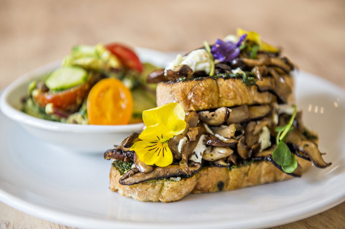 The grilled mushroom toast with herbed goat cheese and micro arugula on sourdough bread at Ivy on 7th