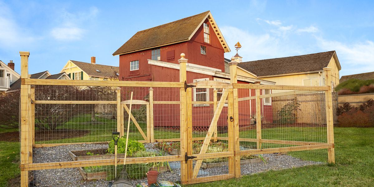 Install A Critter Proof Garden Fence This Old House