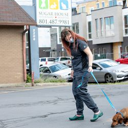Hannah Latimer, a vet technician, helps Haydes make his way inside Sugar House Veterinary Hospital in Salt Lake City on Thursday, May 21, 2020. The facility's lobby remains closed amid the COVID-19 pandemic, and pet owners are asked to call the hospital and wait in the parking lot for a technician to walk their pets inside and return them after their appointment.