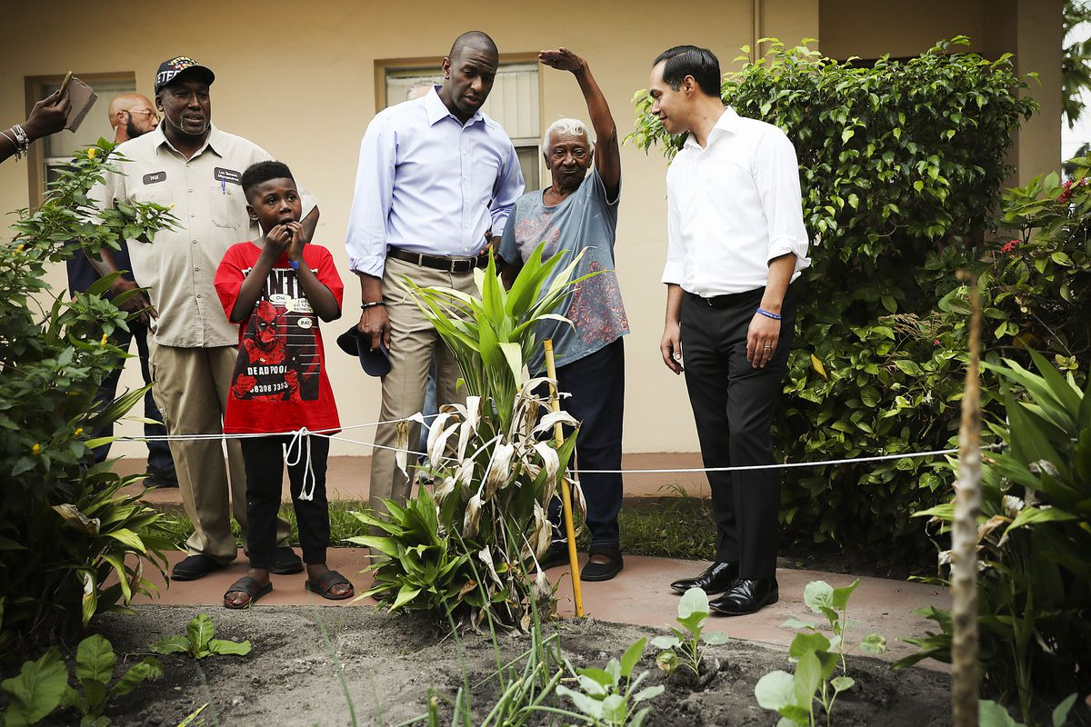 Florida Democratic governor candidate Andrew Gillum (center) and former HUD Secretary Julian Castro (right) talk to residents of Fort Lauderdale, Florida, on November 03, 2018.