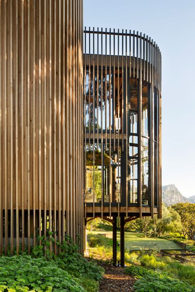 Circular Tree House cylindrical 'treehouse' on stilts rises in cape town - curbed