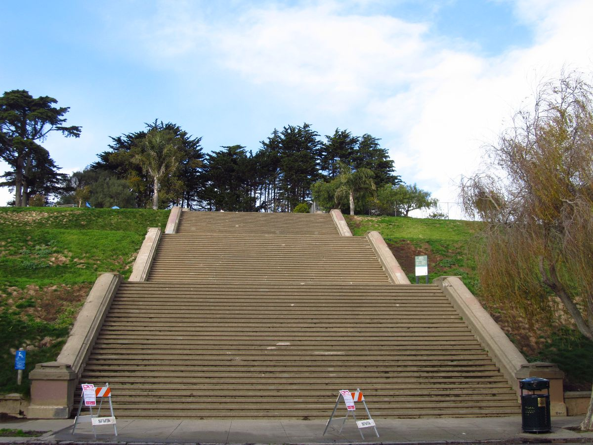 The Alta Plaza Park Steps in San Francisco California. The steps have grass on both sides. At the top of the steps are trees.