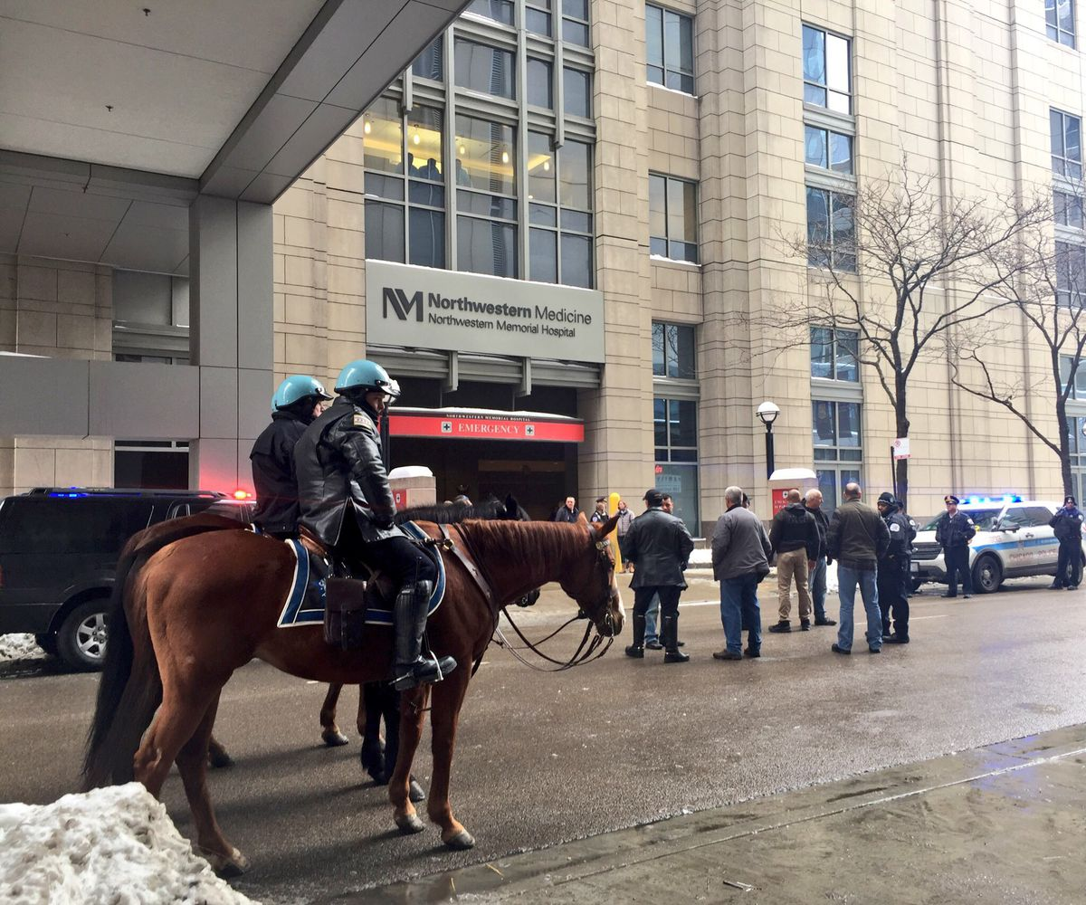 Mounted police were posted outside Northwestern Memorial Hospital's emergency room Tuesday after police Cmdr. Paul Bauer was fatally shot at the Thompson Center. | Sam Charles/Sun-Times