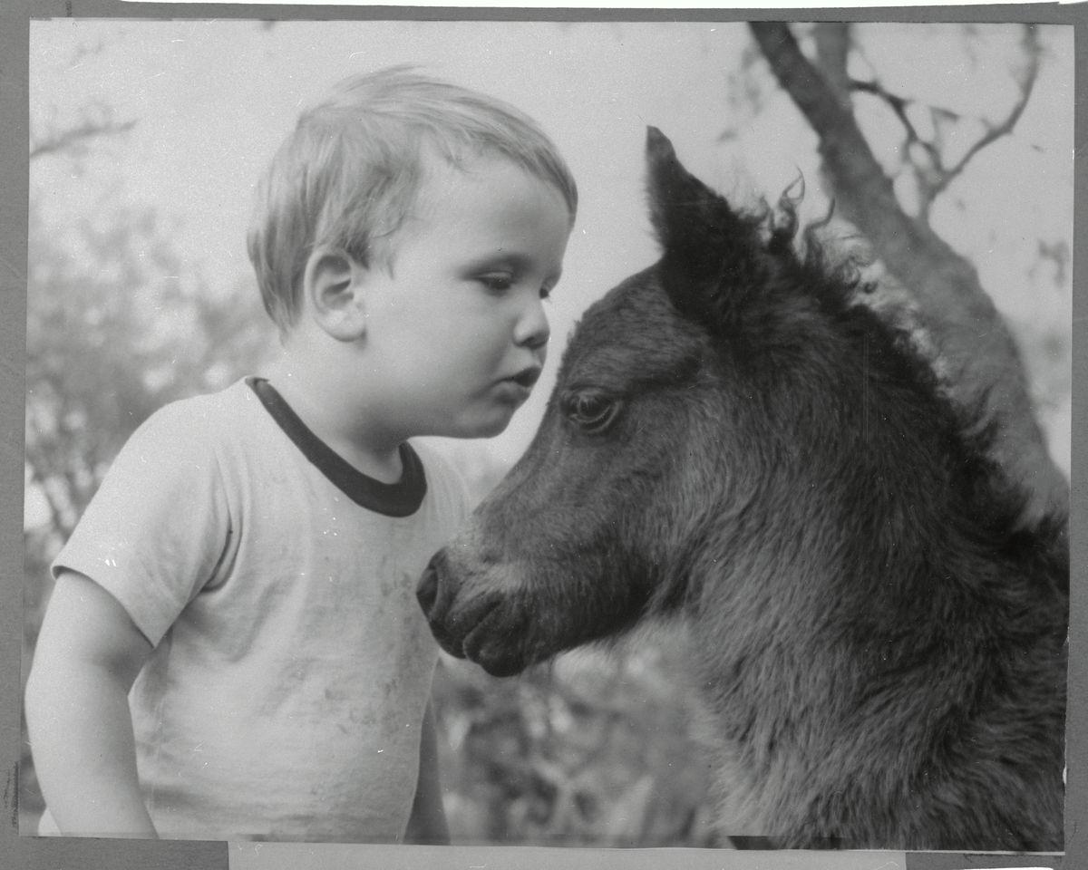 Boy Whispering to Shetland Colt