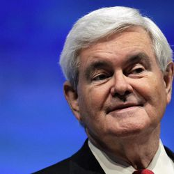 Republican presidential candidate, former House Speaker Newt Gingrich speaks at the National Rifle Association convention in St. Louis, Friday, April 13, 2012.