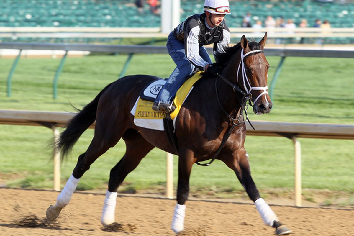 LOUISVILLE, KY - APRIL 29:  Stately Victor runs on the track during the morning workouts for the Kentucky Derby at Churchill Downs on April 29, 2010 in Louisville, Kentucky.  (Photo by Andy Lyons/Getty Images)