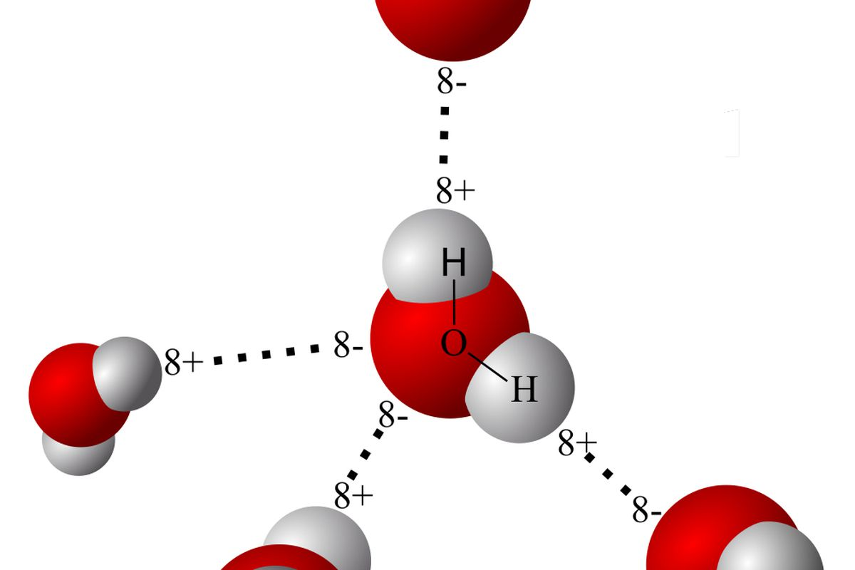 Google Pagerank Algorithm Used In Tool To Model Interactions Between Molecules