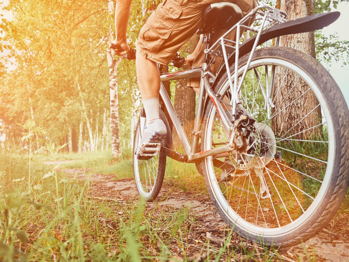 The D.C. area's best bike trails, mapped - Curbed DC