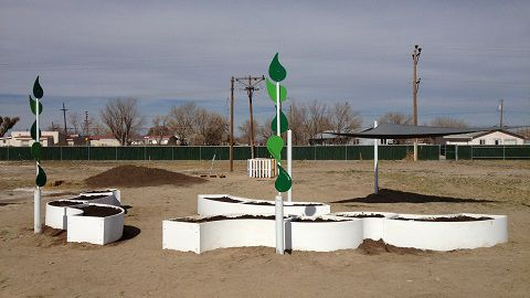 The learning garden at Alamosa Elementary School.