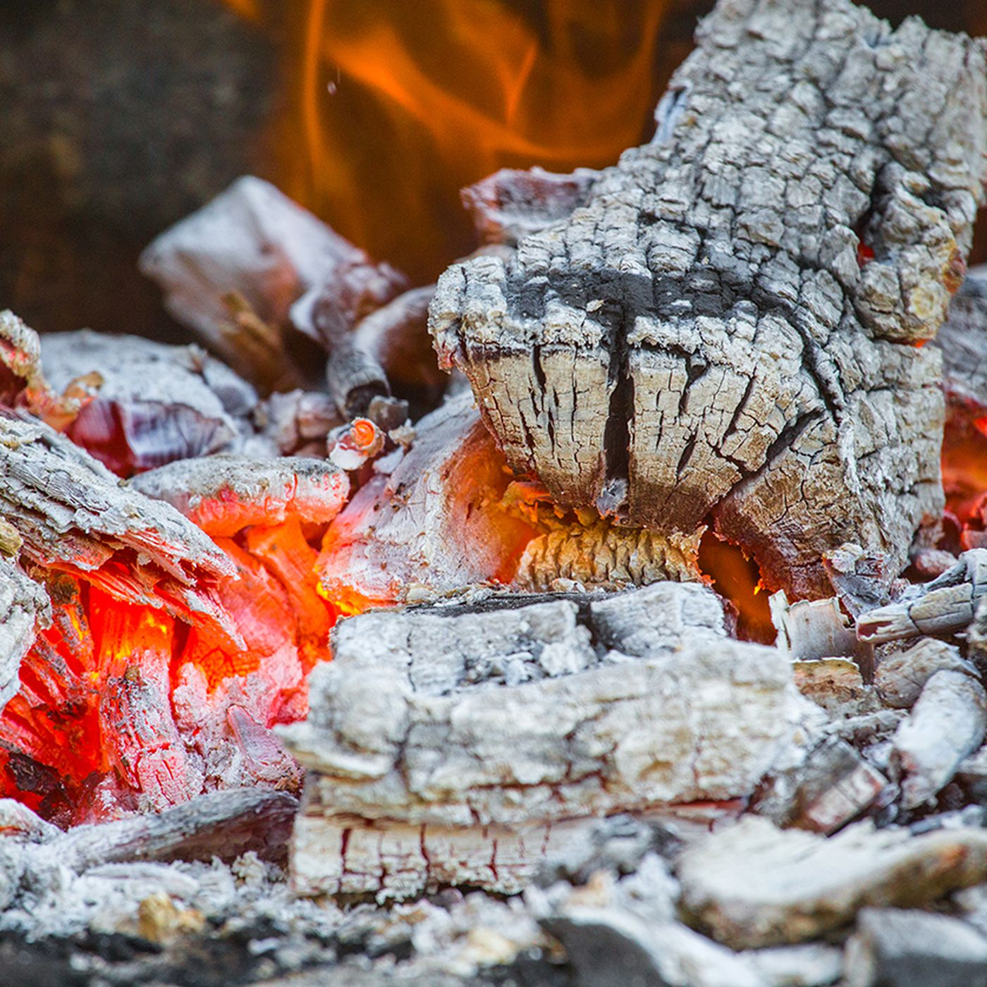 8 Uses For Wood Ash In Your Home Garden And Plants This Old House