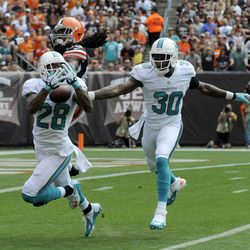 Sep 8, 2013; Cleveland, OH, USA; Miami Dolphins cornerback Nolan Carroll (28) intercepts the ball intended for Cleveland Browns wide receiver Travis Benjamin (80) as Miami Dolphins strong safety Chris Clemons (30) comes in late during the first quarter at