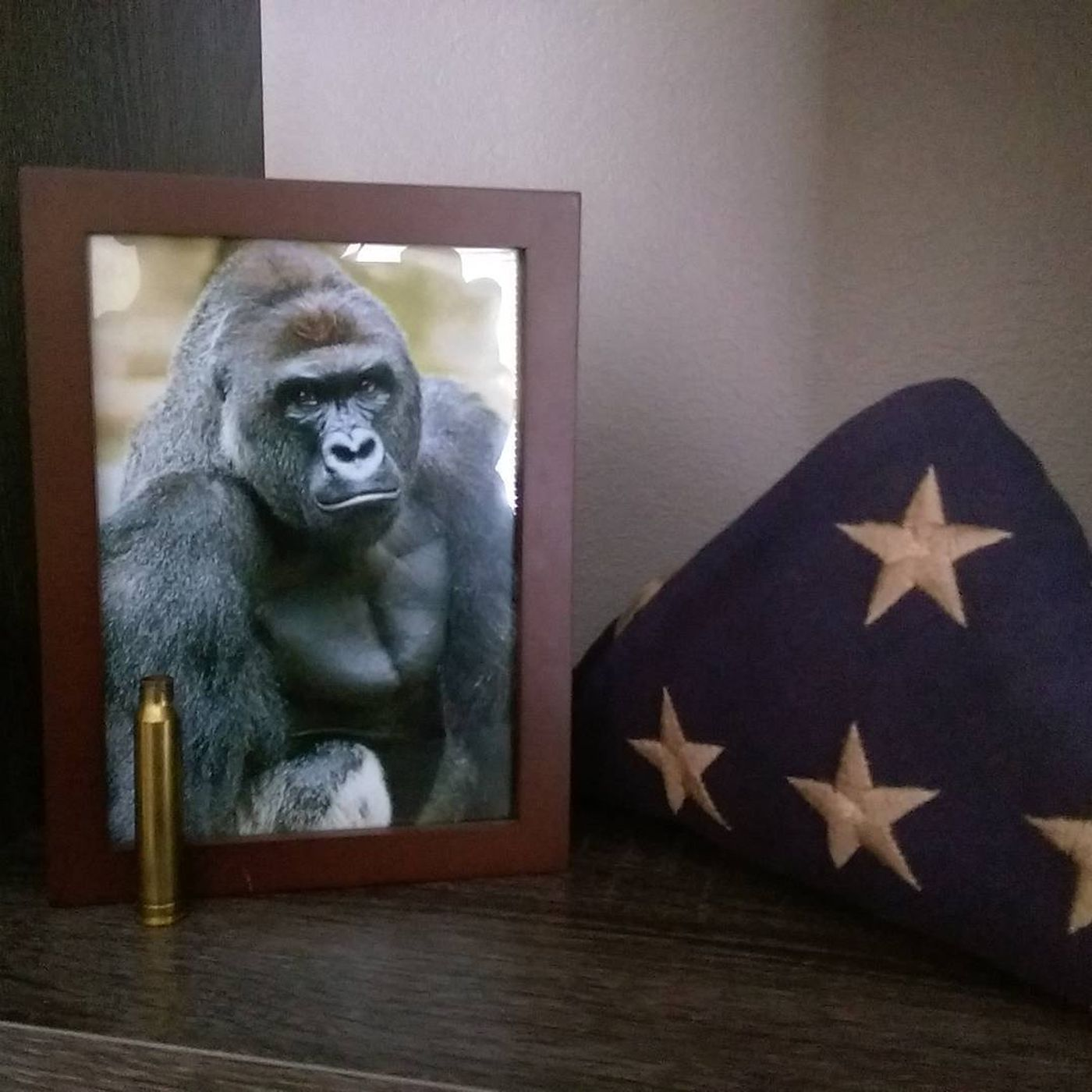 1f33555f6032 The Harambe meme is still going strong. And it s about a lot more than a  dead gorilla.