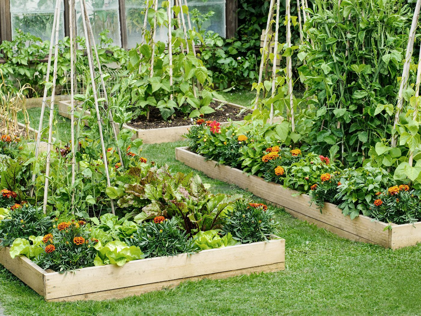 All About Raised Bed Gardens This Old House
