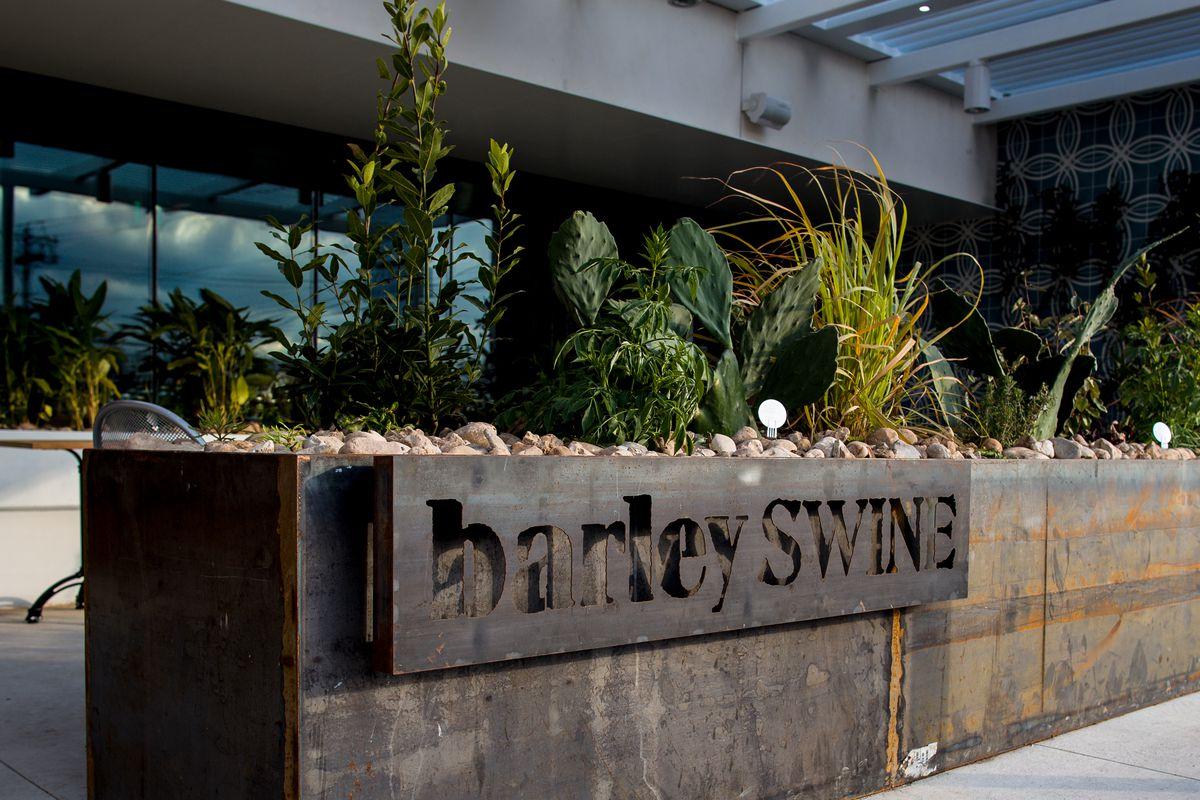 Barley Swine
