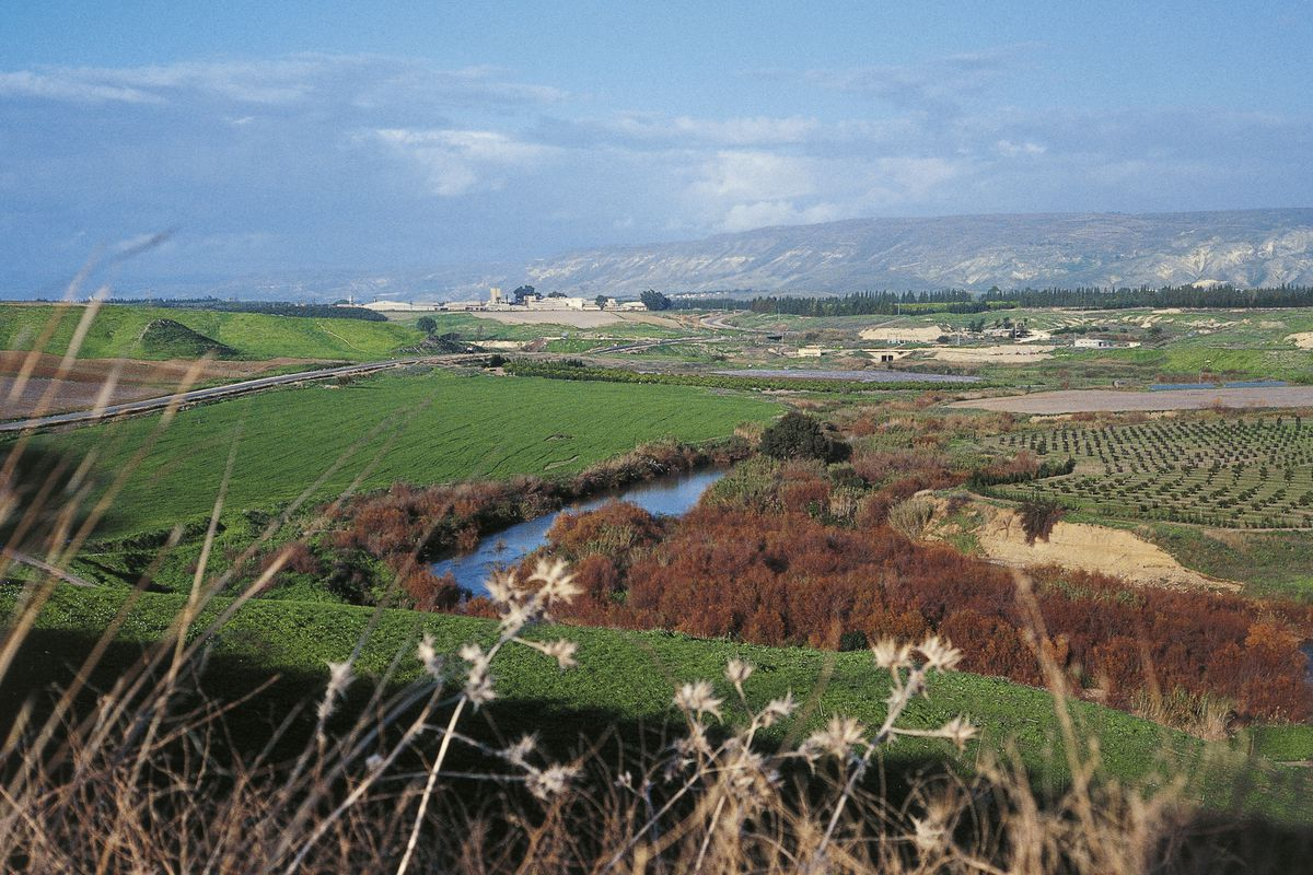 Crops in the valley of the Jordan River, Israel...