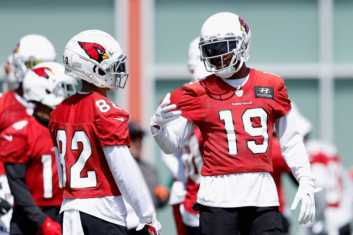 Arizona Cardinals Pre Training Camp 53 Man Roster And Practice Squad Predictions Revenge Of The Birds