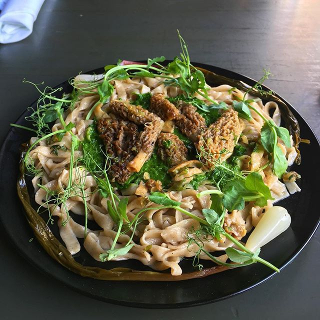 A plate of noodles with mushrooms and pea shoots on top.