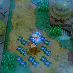 Link's Awakening Mysterious Forest Secret Seashell