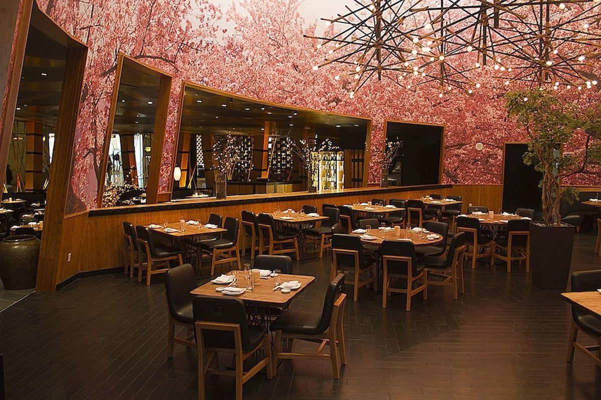 Kumi Japanese Restaurant & Bar