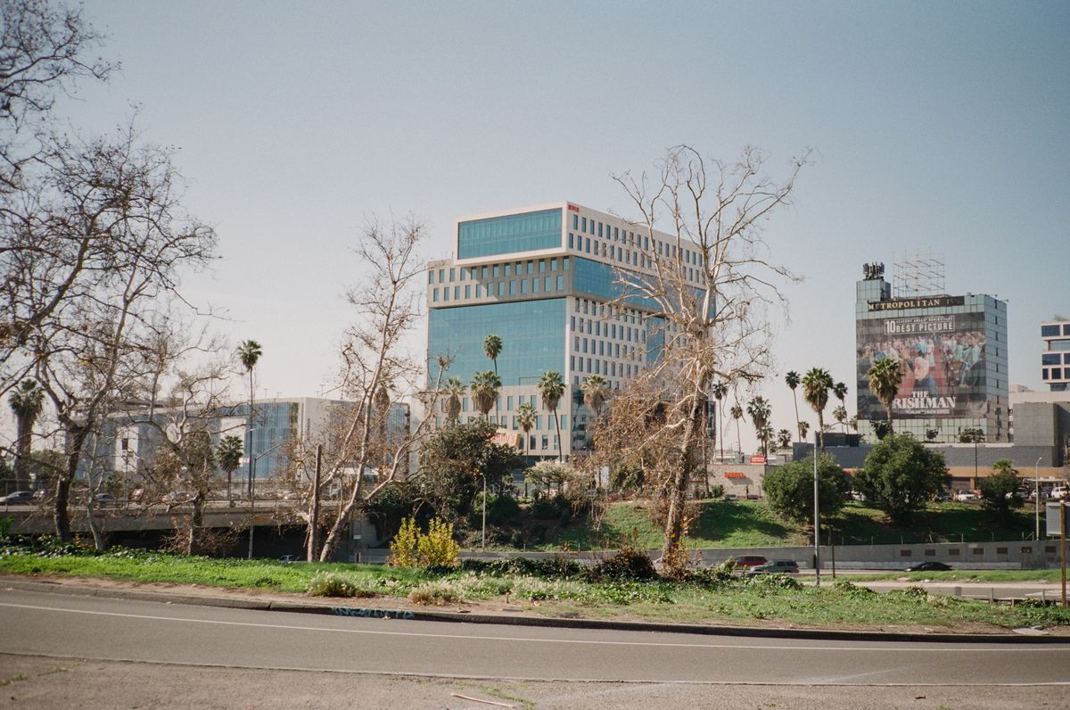 A modern glass high rise building, with two smaller modern glass buildings on either side, is seen across a highway, palm trees, other trees, and a grass divider are seen in front of it.
