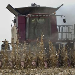 A combine is surrounded by dust at it finishes harvesting a row of corn near Bennington, Neb., Thursday, Sept. 6, 2012. The remnants of Hurricane Isaac dumped heavy rain on some key Midwest farming states that dramatically lessened the drought there, but conditions worsened in two of the nation's biggest corn producers, Iowa and Nebraska, which missed out on the badly needed moisture, according to a drought report released Thursday.