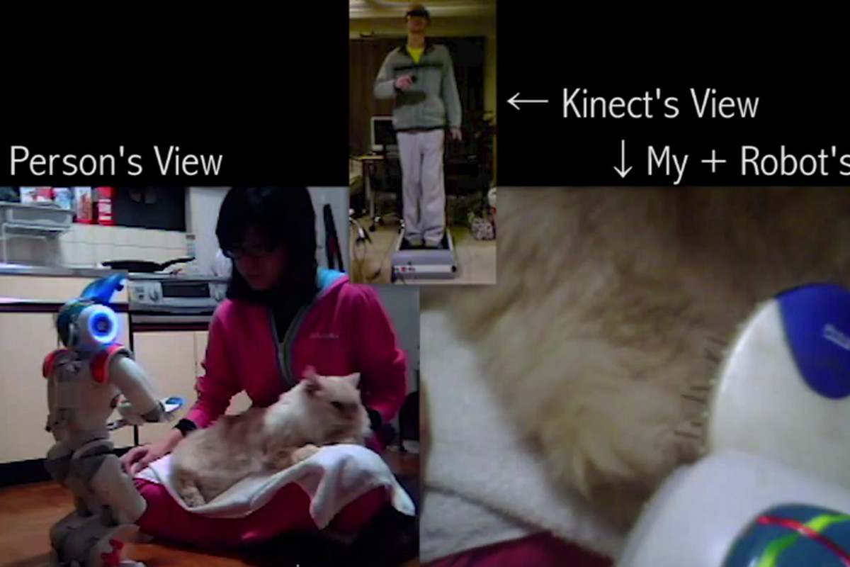 Kinect and Wiimote-enabled Nao robot pets a cat - The Verge