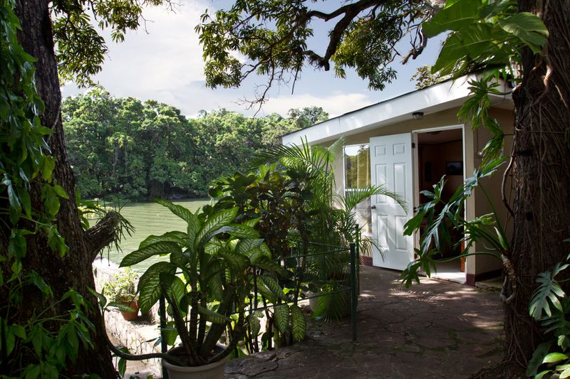 A light beige and white home sits behind vegetation in a verdant jungle, adjacent to greenish water.