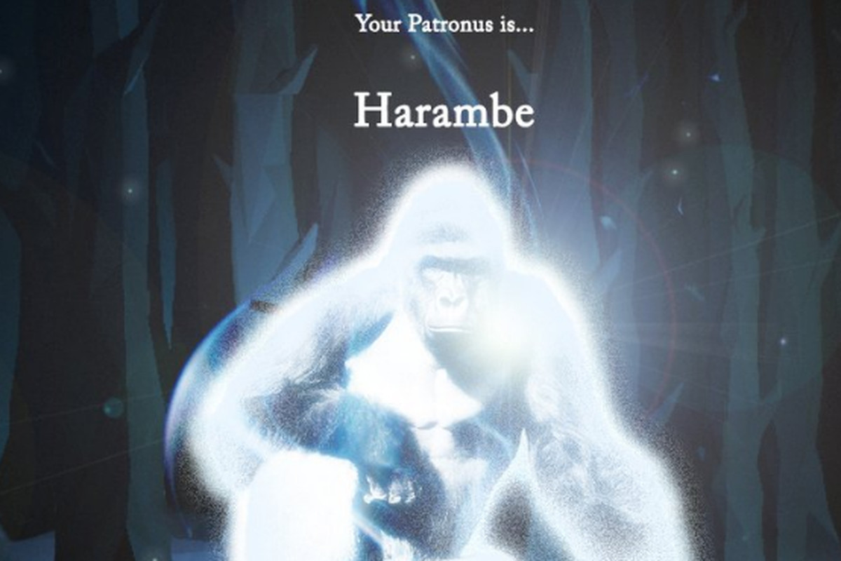 Harambe Is Not An Official Patronus Polygon