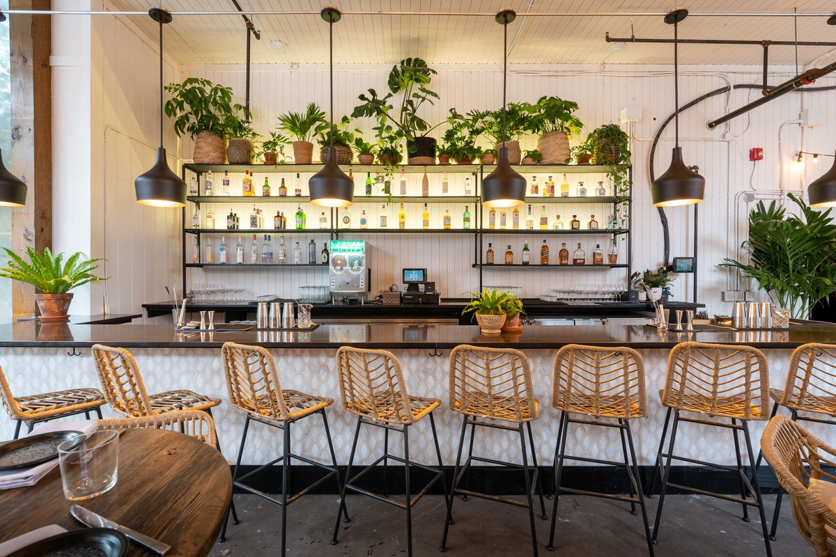 Wicker bar stools at a white bar with plants and liquor bottles on the shelves.