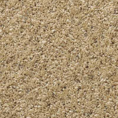 Close up of cut pile carpet style.