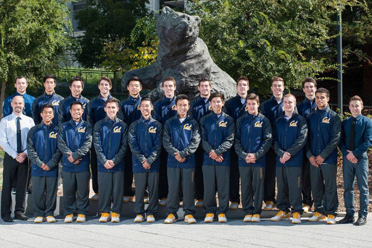 Your 2013-14 Cal Men's Gymnastics Squad