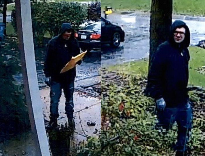 Surveillance images of a person caught on camera shortly before a burglar alarm went off Oct. 23 at a Naperville home. | Will County sheriff's office