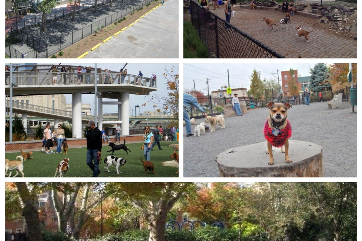 """Top: <a href=""""http://philly.curbed.com/archives/2014/06/02/take-a-look-at-the-market-street-dog-run-near-penns-landing.php"""">Market Street Dog Run</a>, <a href=""""https://twitter.com/PalmerDoggieDep/status/468502210578354176"""">Palmer Doggie Depot</a>, M"""