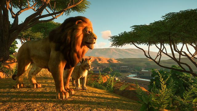 a lion with a cub at sunset in Planet Zoo