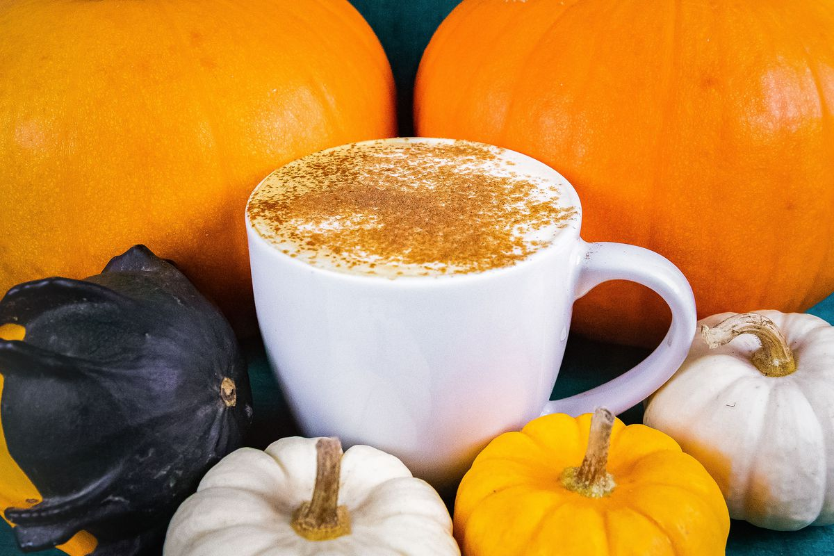 A coffee drink in a white mug, topped with sprinkled cinnamon, is surrounded by orange and white pumpkins, and a green gourd.