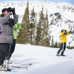 """Tracy Aviary will host its """"Skiing and Birds"""" event to support local conservation efforts, Dec. 8-9 at Alta Ski Area."""
