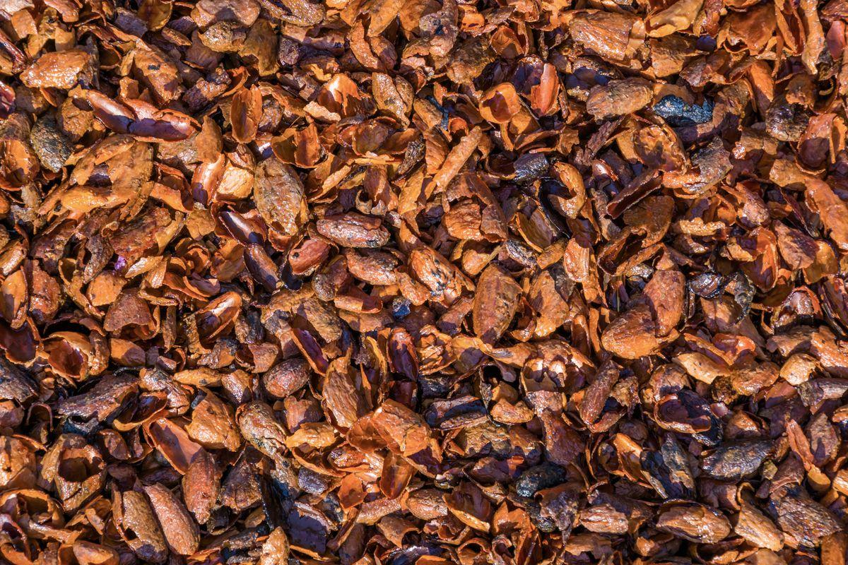 Cocoa Hulls
